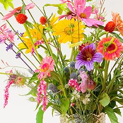 springflowers_mixed.jpg
