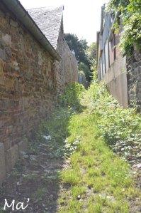 La ruelle du jardin